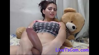 Beautiful latina tgirl jerks big dick cam
